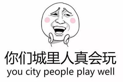 Popular Internet Slang 你们城里人真会玩