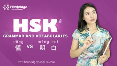 "How to Use ""懂(dǒng)"" and ""明白(míng bái)"""