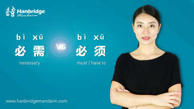 "How to Use ""必须(bì xū)"" and ""必需(bì xū)"""