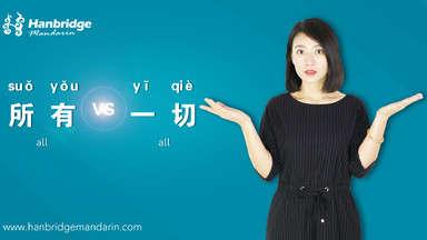 "How to Use ""所有(suǒ yǒu)"" and ""一切(yī qiè)"""